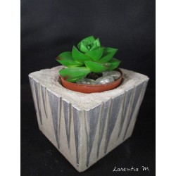 Concrete flower pot holders for cactus (without plants)