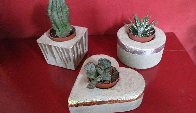 Concrete Flowerpots for cactus